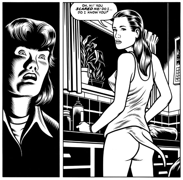 Charles Burns Black Hole Zwart gat